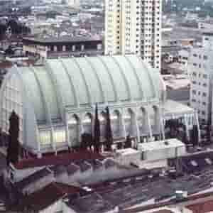 Christian Congregation Of Brazil_logo
