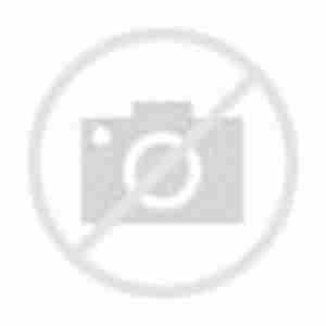 W. R. Berkley Corporation_logo
