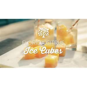 florida-citrus-ice-cubes-florida-orange-juice image