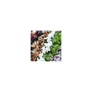 10-best-apple-walnut-salad-mayonnaise-recipes-yummly image