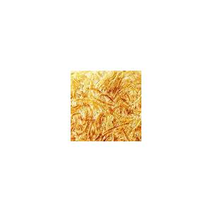 perfect-hash-browns-better-homes-gardens image