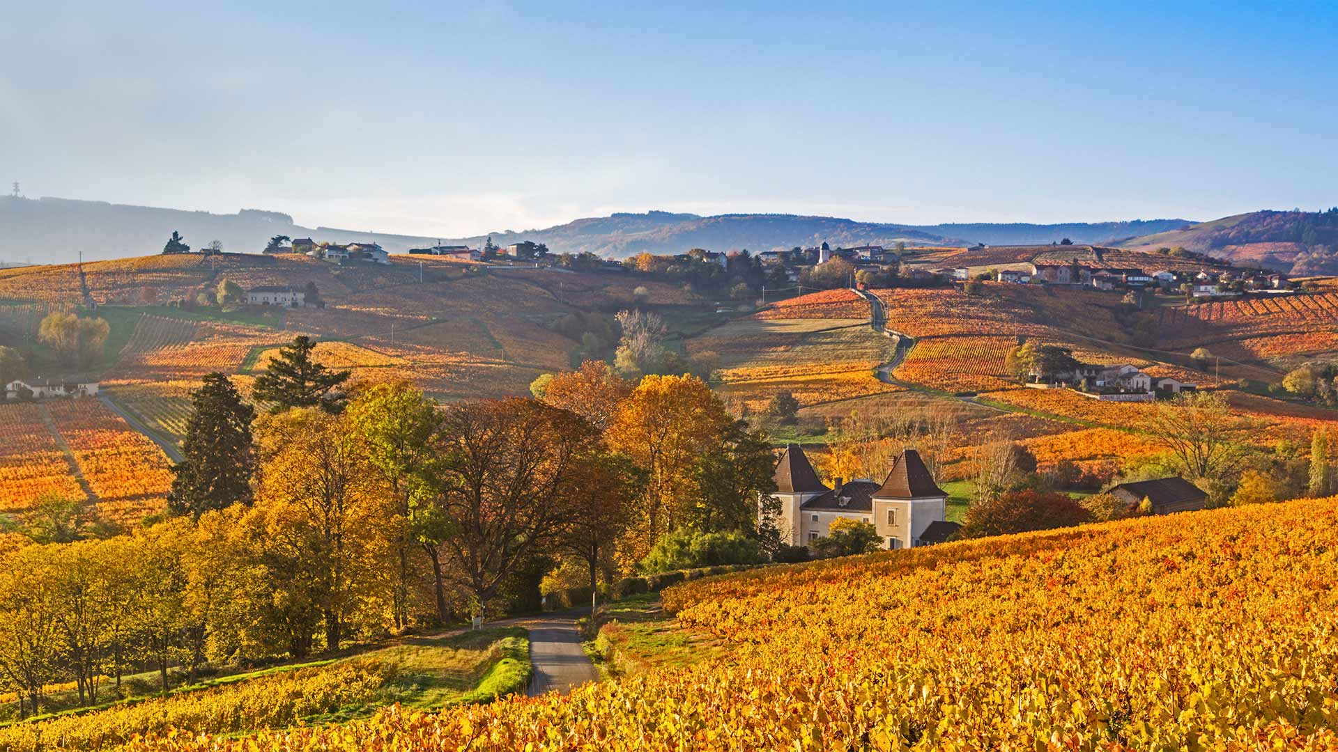 Lantignié in the Beaujolais region of France (© Jon Arnold/Danita Delimont)