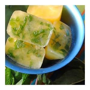 citrus-ice-cubes-recipe-quericavidacom image