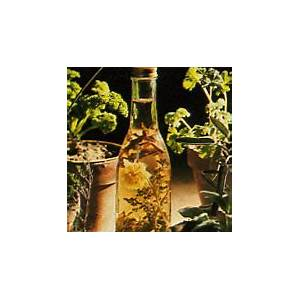 how-to-make-vinegar-with-herbs-mother-earth image