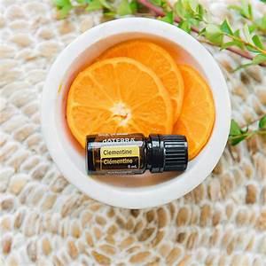 3-easy-citrus-recipes-dōterra-essential-oils image