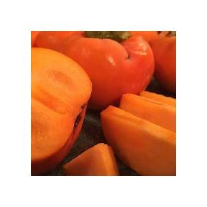 fuyu-persimmons-the-best-tasting-persimmons-to-grow image