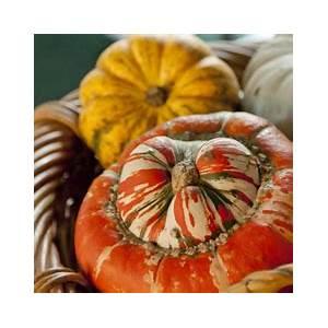 italian-pumpkin-recipes-great-italian-chefs image