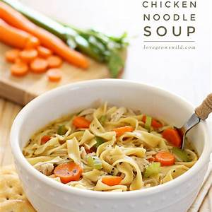 quick-and-easy-chicken-noodle-soup-love-grows-wild image