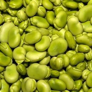 lima-bean-casserole-recipes-thriftyfun image