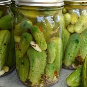 easy-garlic-dill-pickles-no-canning-needed-an-oregon image