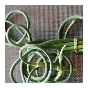 how-to-cook-with-garlic-scapes-bon-apptit image