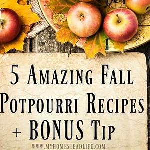5-amazing-fall-potpourri-recipes-bonus-tip image