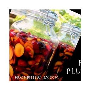 this-fermented-plum-brandy-will-change-the-way-you-think image