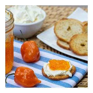 habanero-pepper-jelly-homemade-recipe-that-is-very-spicy image