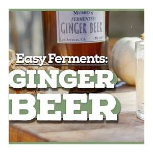 how-to-make-ginger-beer-at-home-homebrew-academy image