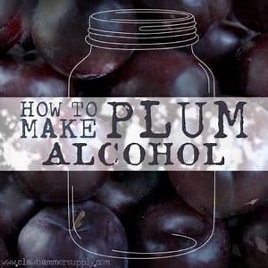 plum-moonshine-recipe-clawhammer-supply image