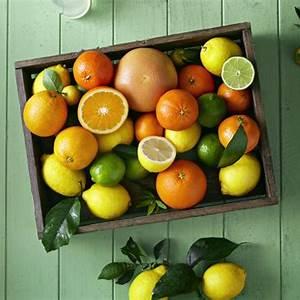 lemon-lime-and-orange-citrus-cooler-drink image