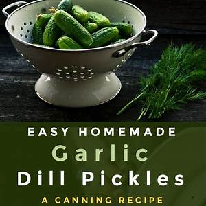 homemade-garlic-dill-pickles-a-canning image