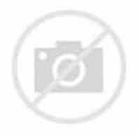 HFL Solutions promo codes