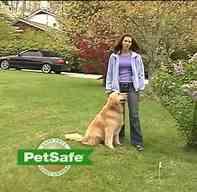 PetSafe_logo